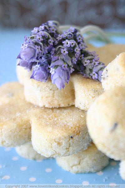 Lavender Shortbread | Serenity Lavender - Unique Lavender Gifts ...