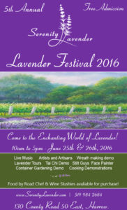 Lavender_Festival_Purple