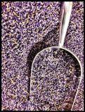 bulk-lavender-12lb851691